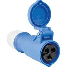 as-Schwabe CEE-Kupplung 230V, blau