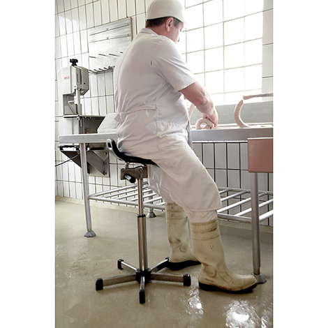 Edelstahl-Stehhilfe für Nassräume, Sitz drehbar