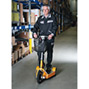 Elektro-Transportroller Ameise ® 1000