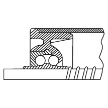 Kunststoff-Tragrollen. Lager: thermoplastischer Kunststoff, Stahl-Kugelreihen