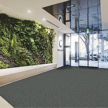 Schmutzfangmatte für den Eingangsbereich, HxBxT 9 x 900 x 600 mm, mokka