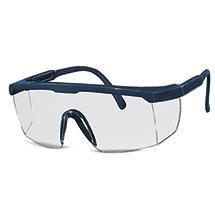 Schutzbrille Panorama